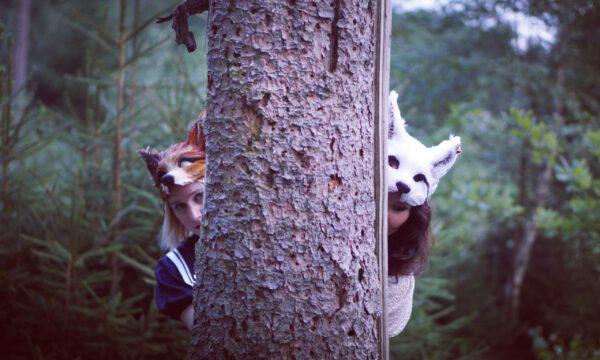 Wald Fang mich Baum insta